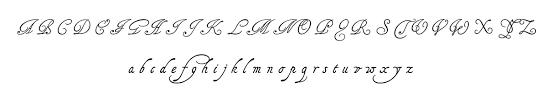 tagettes font calligraphy script font