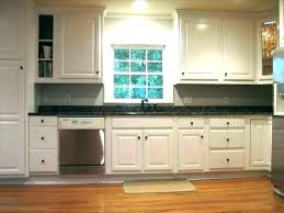 Where Can I Buy Kitchen Cabinets Buy Discount Kitchen Cabinets Amazg Designg Spiration Cheap