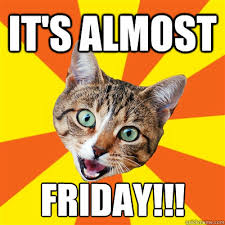 Almost Friday Meme - it s almost friday cat meme cat planet cat planet