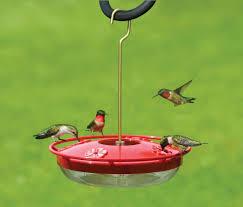 favorite hummingbird feeders the backyard naturalist