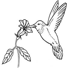coloring blog archive bird coloring