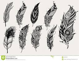 set of rustic decorative feathers stock vector image