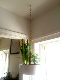 Buy A Planter How To Hang A Planter Ala The Ceiling Without Task Rabbit A Man