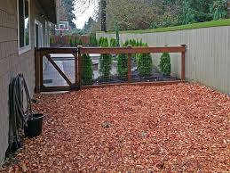 backyard ideas for dogs best 25 backyard dog area ideas on pinterest best solutions of