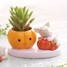 Cute Succulent Pots Online Buy Wholesale Animal Plant Pots From China Animal Plant