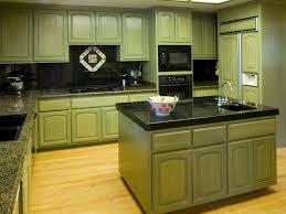 green kitchen black cabinets home design ideas