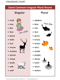 some common irregular plural nouns english language esl efl