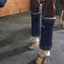 no bow wraps draper equine therapy no bow wraps brandenburg equine