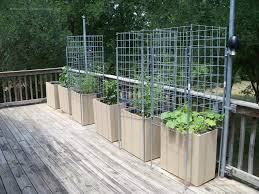 bold and modern vegetable garden planters lovely decoration