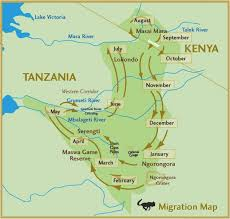 Mt Kilimanjaro Map Track The Wildebeest Migration On Google Maps U2014 Fair Trade Safaris