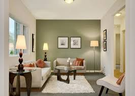 Dining Room Wall Color Ideas Accent Wall Color Ideas Living Room Www Elderbranch