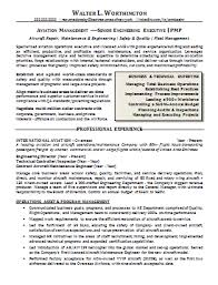 Professional Resume Writers Nyc Lord Of The Flies Symbol Summary Essay Use Computers Essay Ancient