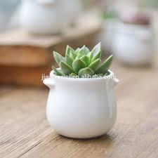 list manufacturers of indoor decorative ceramic planter buy