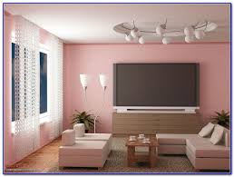 Livingroom Paint by Asian Paints Color Combinations Living Room Ideasidea