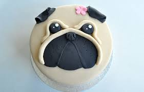 dog cake pug dog cake kildare treats