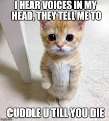 Cuddle Meme - 56 of the best cuddle memes best wishes and quotes com words