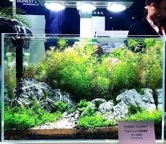 marineland aquatic plant led lighting system w timer 48 60 marineland aquatic plant led light with timer beginner lights