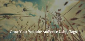 proper use of tags 4 tips to grow your youtube audience