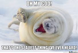 seal of humour by boom meme center