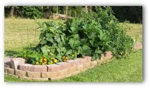 raised vegetable garden plans and ideas