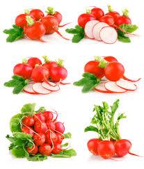 fruit photo 3635 fruits and vegetables harvest season