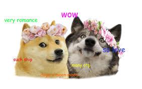 Doge Meme Pronunciation - doge is dog e right chit chat section trickster online