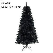 black slimline tree rainforest islands ferry