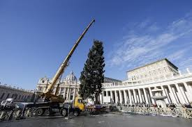 where do you put a st polish christmas tree put up in st peter s square radio poland