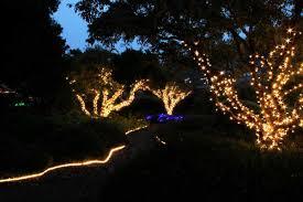 botanical gardens fort bragg ca festival of lights lake county news california award winning independent local news