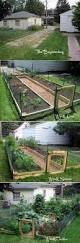22 ways for growing a successful vegetable garden time saving