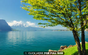 beautiful spring scenery 10435 wallpaper