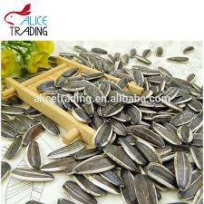 sunflower seeds wholesale sunflower seeds wholesale suppliers and