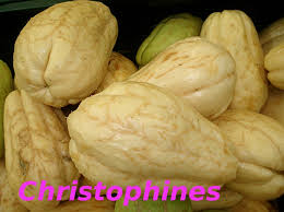 cuisiner les christophines dictionnaire de cuisine et gastronomie christophine