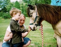 wewillride inc therapeutic horseback riding