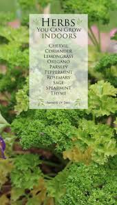 298 best gardens images on pinterest gardening organic
