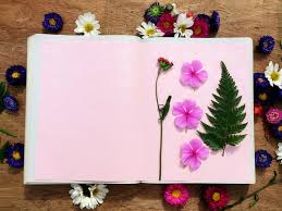 Drying Flowers In Books - how to dry flowers yourself u2013 greetings of grace