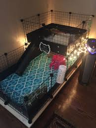 awesome ideas for guinea pig hutch and cages lofts wheels and