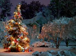 christmas decoration outside home christmas lights wallpaper christmas tree wallpaper christmas