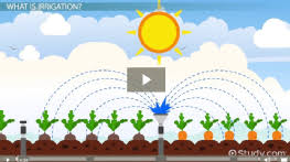 what is soil definition structure u0026 types video u0026 lesson