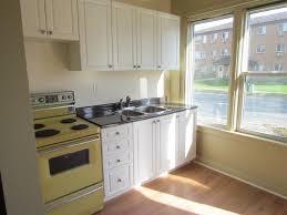 kitchen kitchen cabinet replacement doors inside inspiring