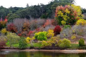 Mt Lofty Botanic Gardens Mount Lofty Botanical Gardens Adelaide By Mckinnon