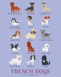 dogs of the world cute posters show the origins of 200 dog