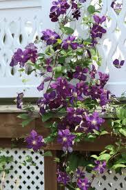 47 best backyard flower gardens images on pinterest flower