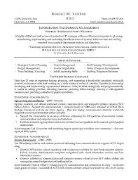 it professional resume template best professional resume