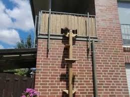 katzenleiter balkon the 25 best katzenleiter ideas on katze