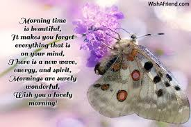 morning time is beautiful it makes you morning message
