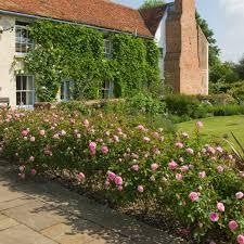 Garden Hedges Types Hyde Hall Hedging Bundle 10 Roses Repeat Flowering Popular