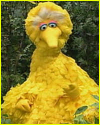 sesame asks obama to take big bird ad barack obama