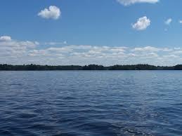 native plant sale muskoka conservancy lake muskoka wikipedia