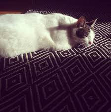 Mud Rugs For Dogs 11 Ways To Stylishly Pet Proof Your Home U2013 Design Sponge